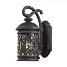 ELK Lighting 42060/1 - Tuscany Coast 1-Light Outdoor Wall Lantern in Weathered Charcoal