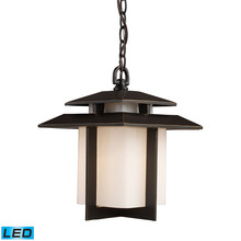 ELK Lighting 42172/1-LED - Kanso 1 Light Outdoor LED Pendant In Hazelnut Br